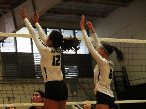 Spike! varsity girl's volleyball team hits harder competition