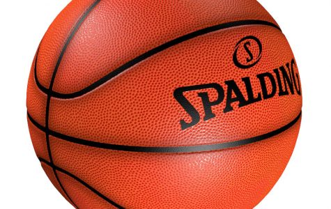 Girls basketball nets second place in states